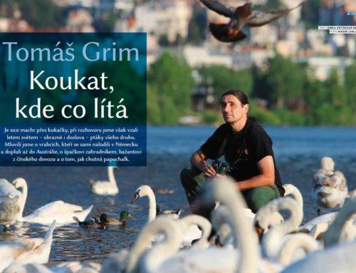 Tomáš Grim (3)